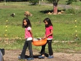 SOHWO Girls Carrying Basket